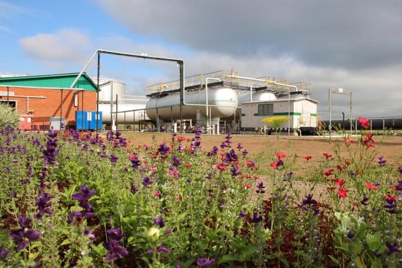 Постановка процессного управления и оптимизация процессов на нефтегазодобывающем предприятии