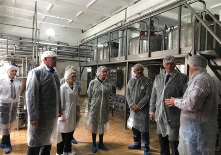 Повышение производительности предприятий Республики Крым