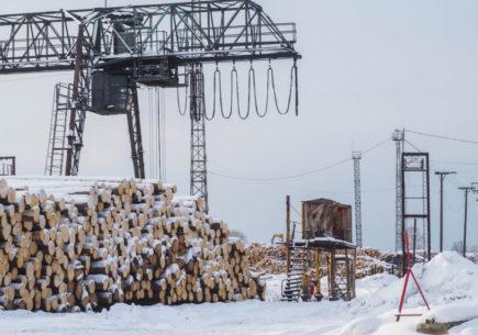 Увеличение эффективности оборудования в 2 раза на производстве по лесозаготовке
